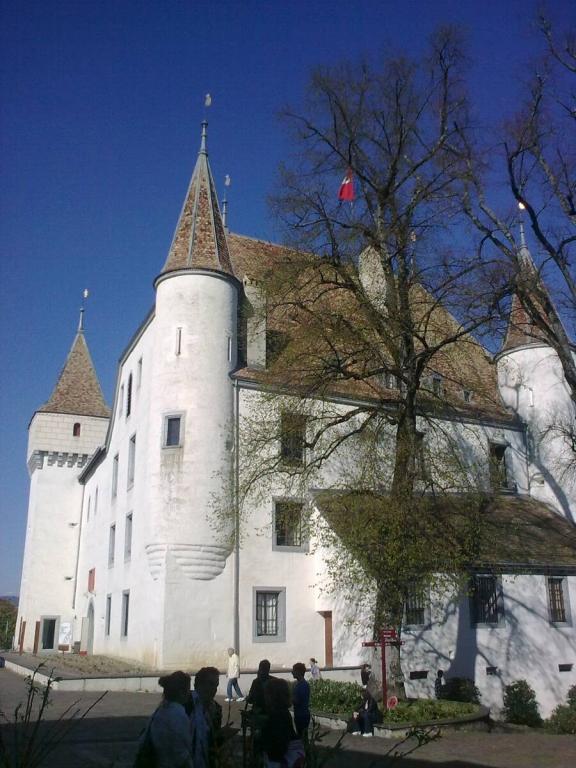Nyon château