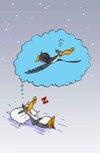 Pingouin_volepsd_copie